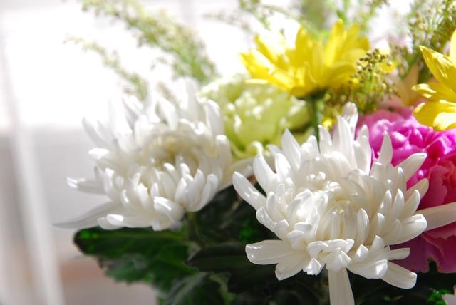 【切り花を長持ちさせる】方法・手順・使い方、メリットデメリットなどについて