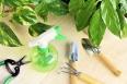 Gardening tools and houseplants – still life