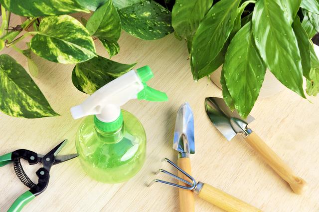 除草剤散布の方法・やり方・手順や使い方