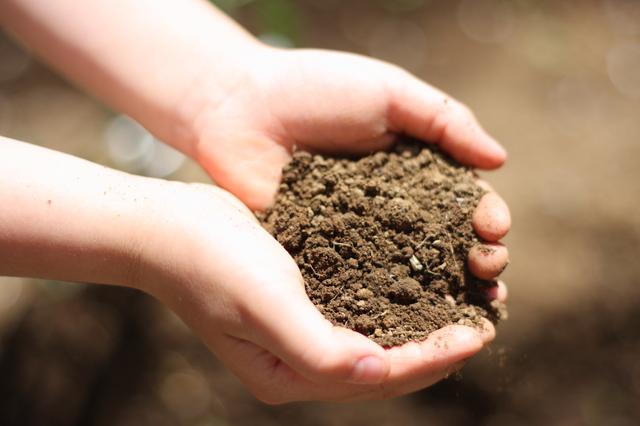 土壌改良の方法・やり方・手順や使い方