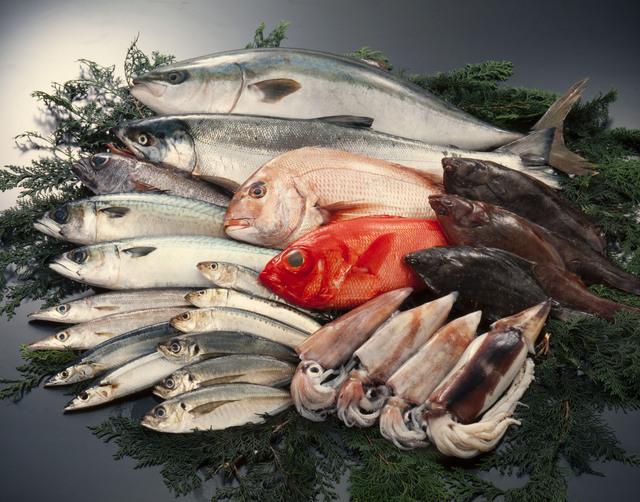 魚の熟成方法・やり方・手順や使い方・流れなどについて