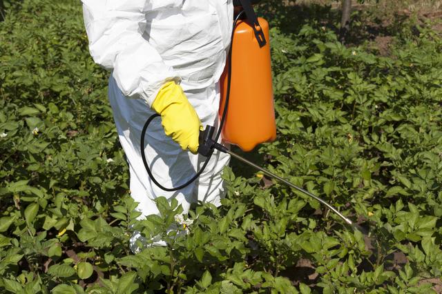 野菜害虫駆除の方法・やり方・手順や使い方・流れ