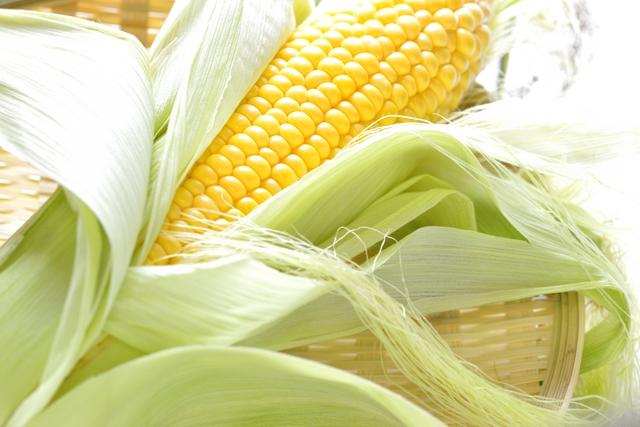 トウモロコシ保存の方法・やり方・手順や使い方・流れ